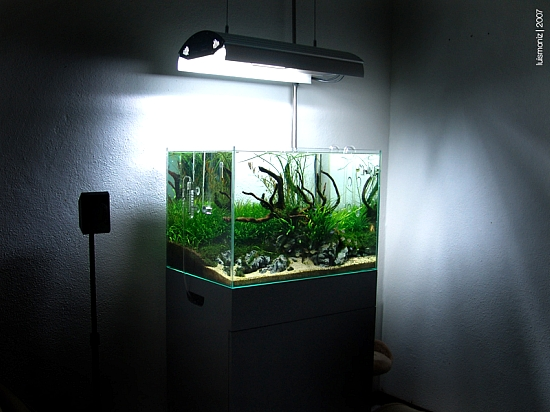 aquariumverlichtingjpg