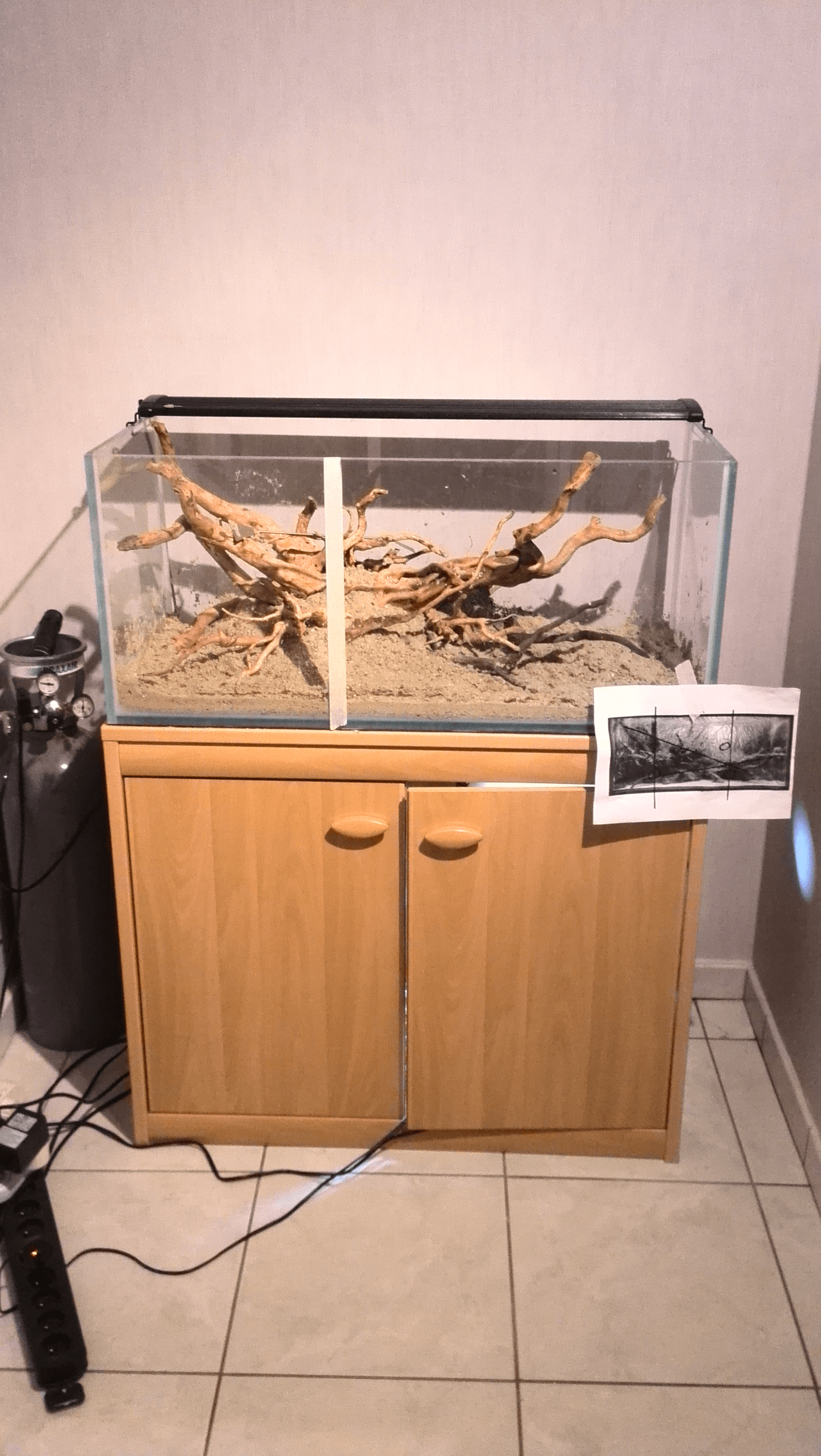 aquarium gulden snede