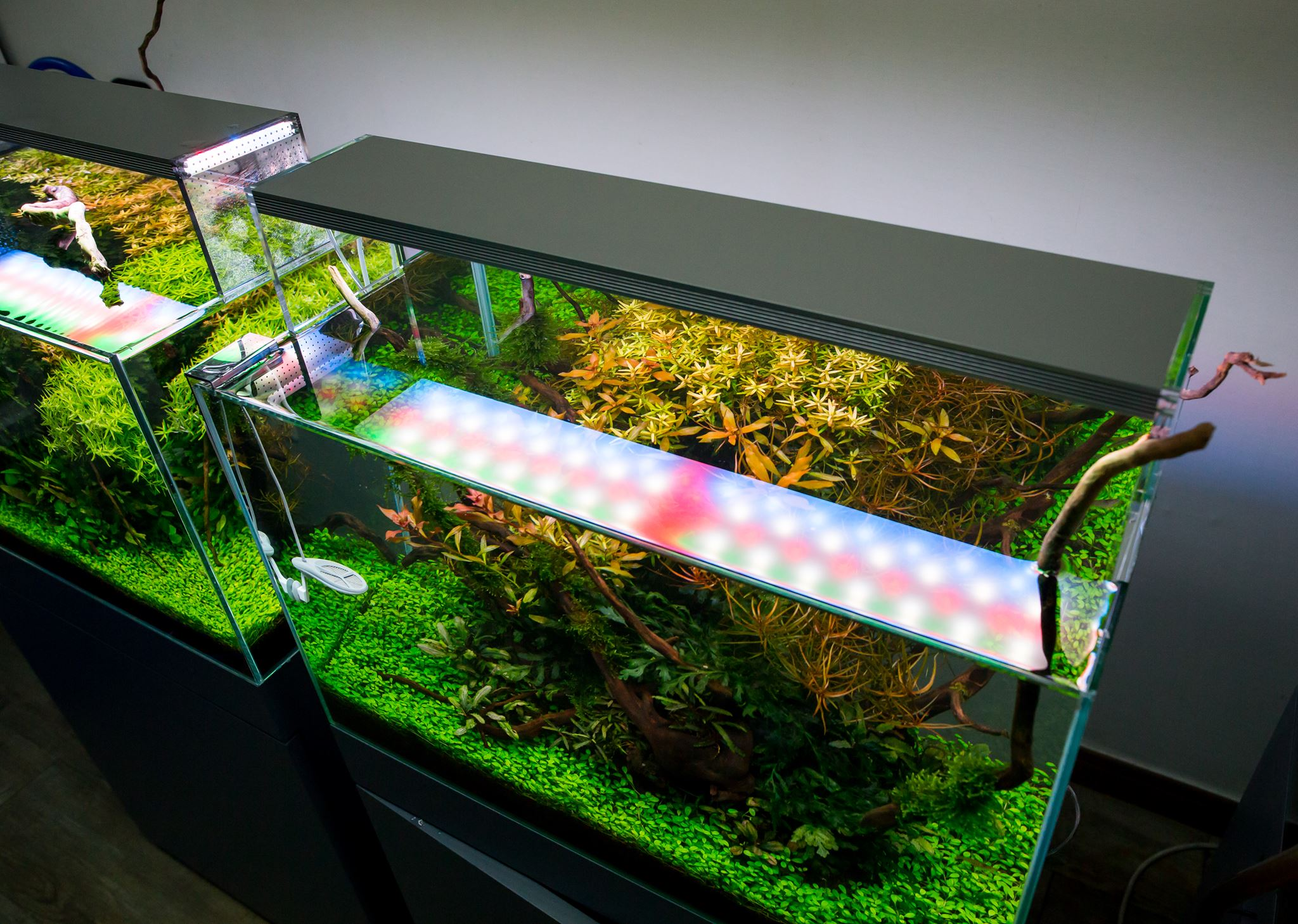 Twinstar aquarium led