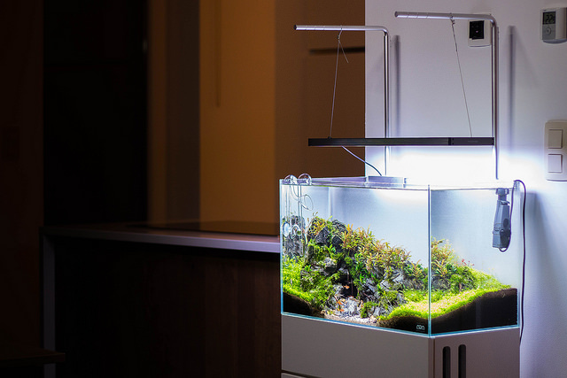 "Aquarium inspiratie: ""Mighty Cave"" door Michael Baumrucker 