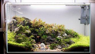 """Aquarium inspiratie: """"Mighty Cave"""" door Michael Baumrucker"""