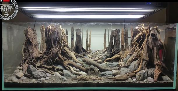 aquarium inspiratie: hardscape